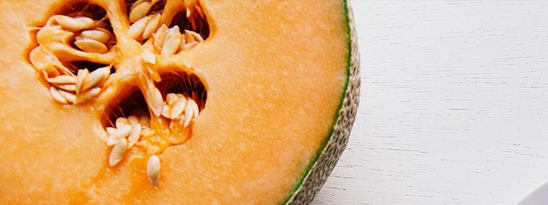 Du melon charentais jaune Filière Qualité Carrefour
